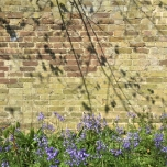 Shadows in the walled garden at Ham House.