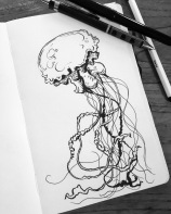 Jellyfish sketch.